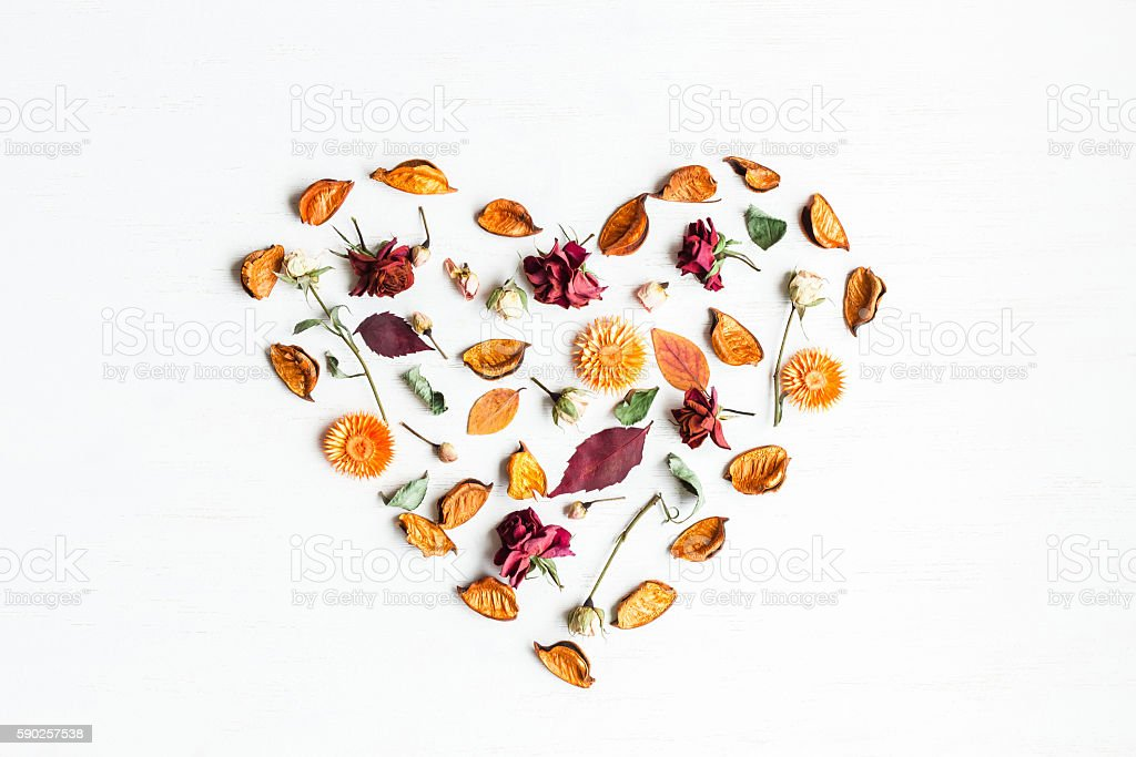 Heart symbol made of dried flowers and autumn leaves – Foto