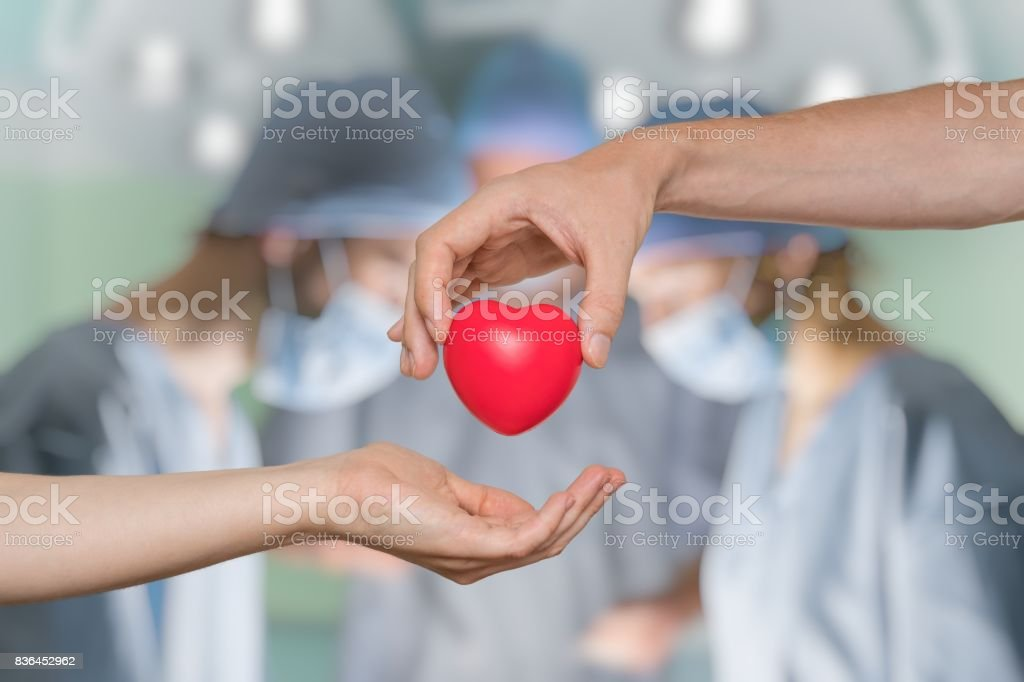 Heart transplant and organ donation concept. Hand is giving red heart. - foto stock
