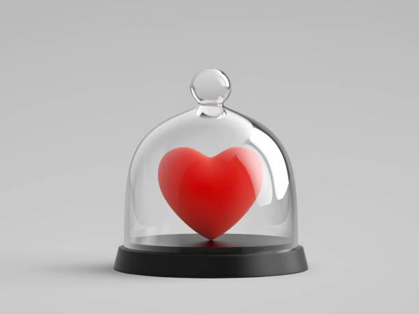 Heart under glass bell jar stock photo