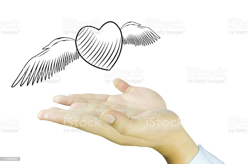 Heart with angel wing fly on Human hand royalty-free stock photo