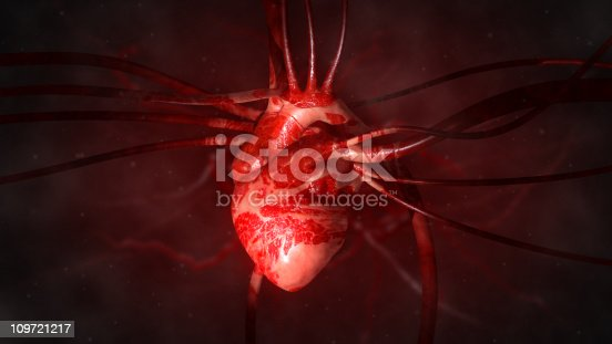 istock Heart with arteries and veins 109721217
