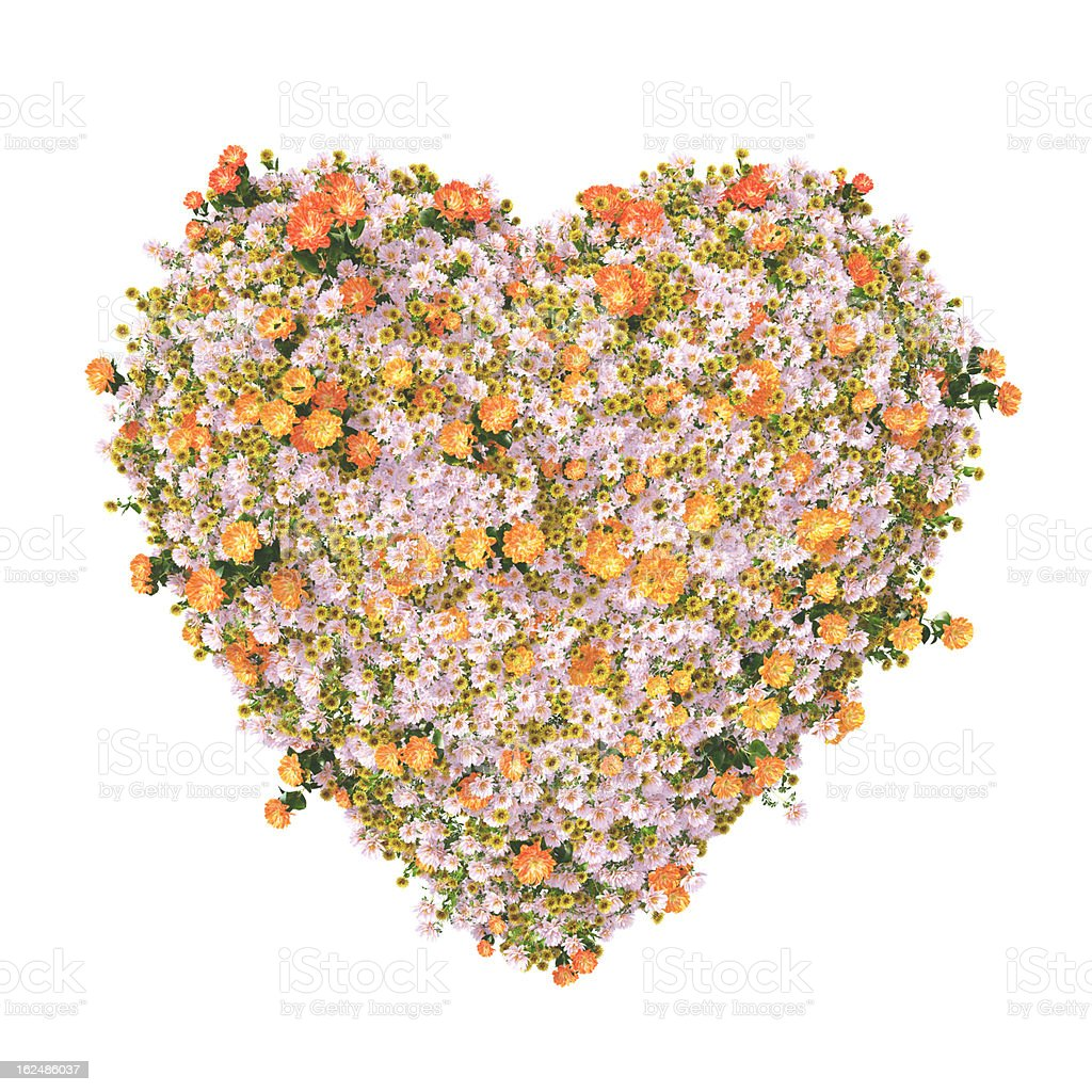 heart with colorful flowers stock photo