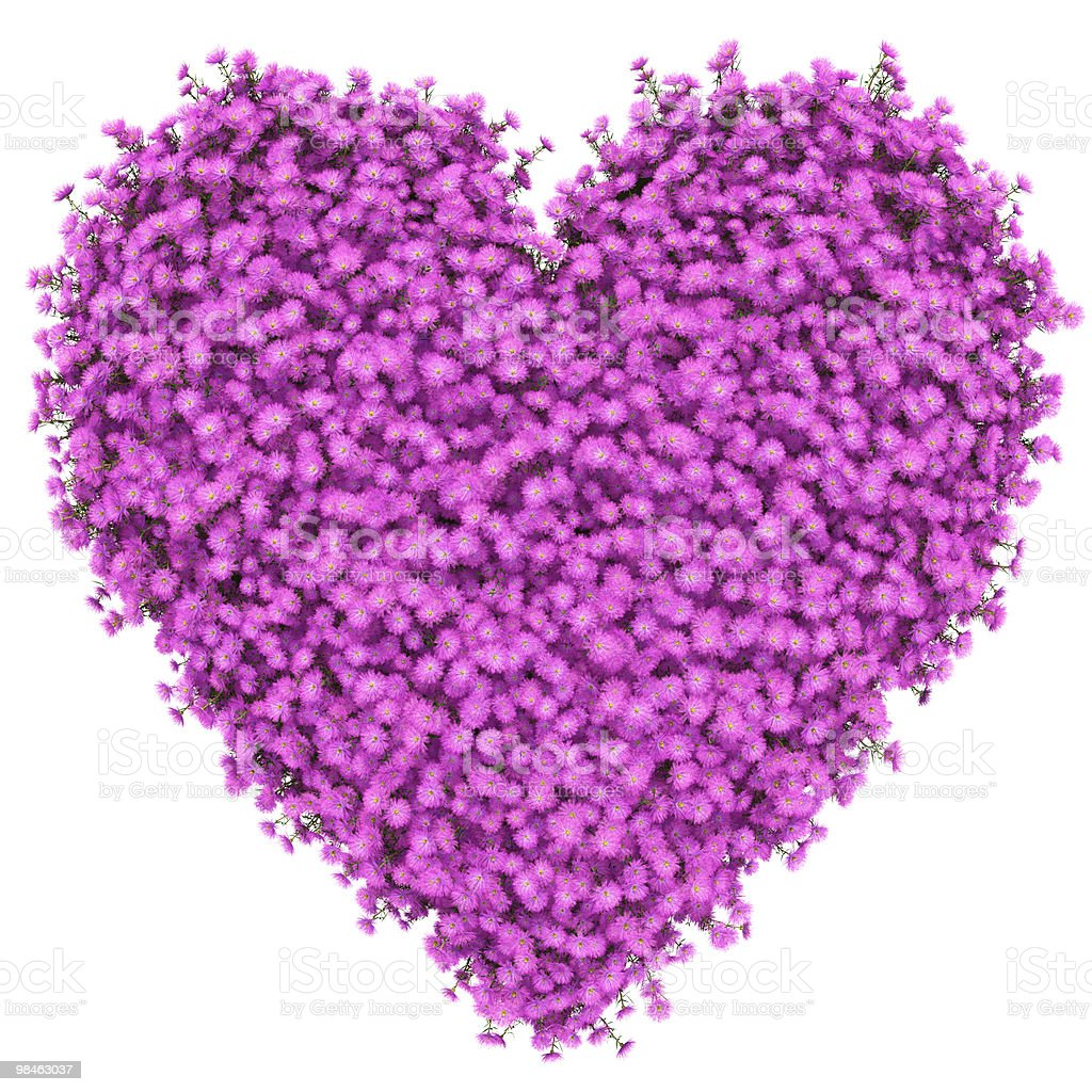 heart with many flowers royalty-free stock photo