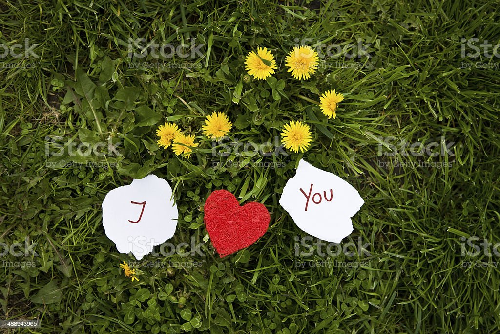 I heart you on the grass stock photo
