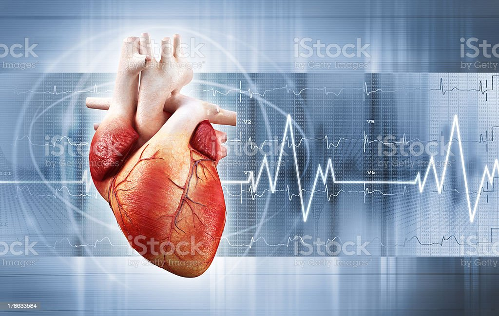 heartbeat stock photo