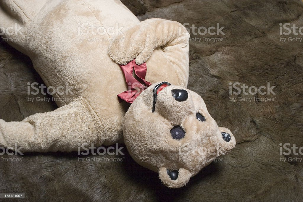 Heartburn Bear royalty-free stock photo