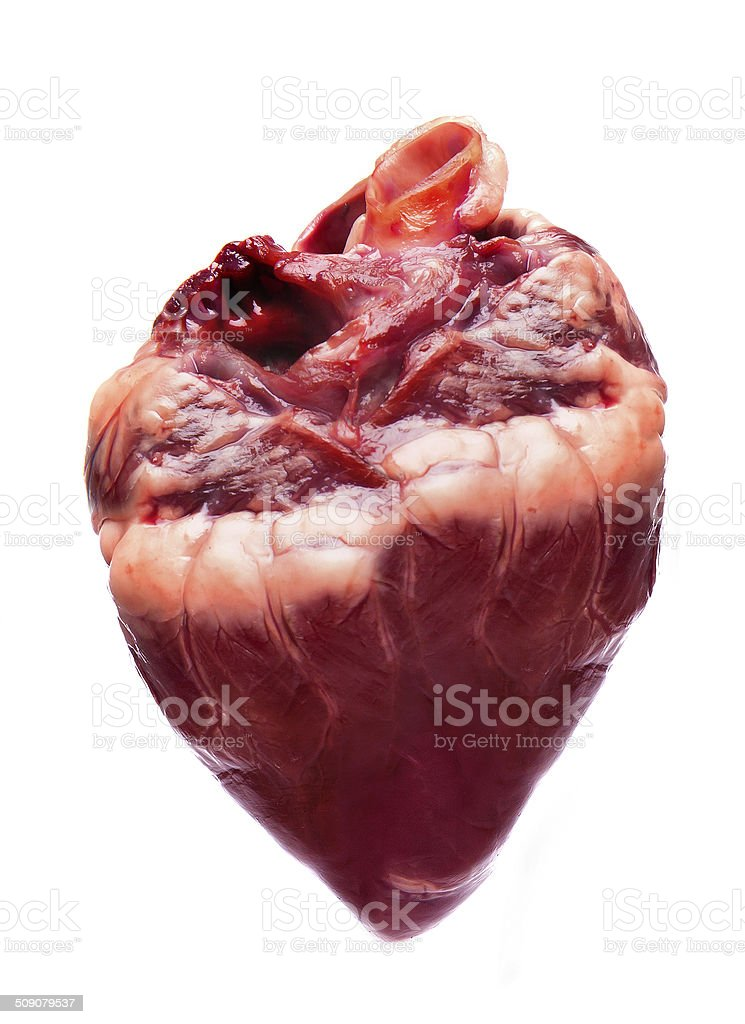 hearts. stock photo