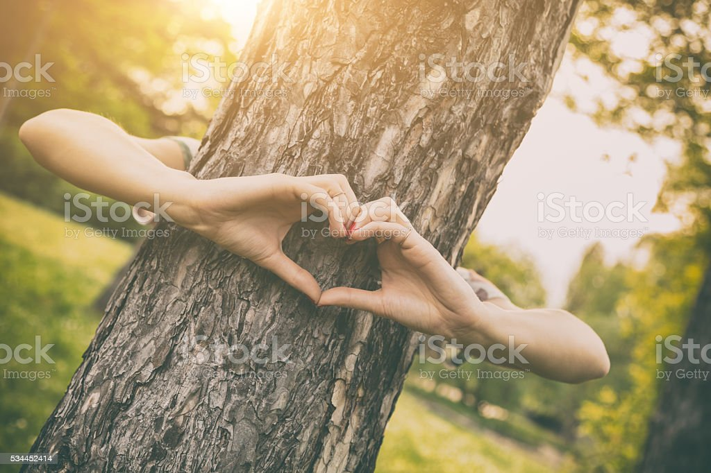 Heart-shape for the nature. stock photo