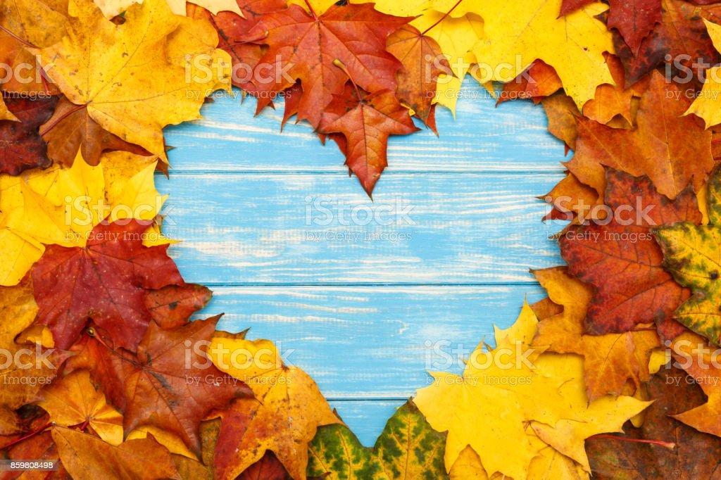 Herzförmige Ahornblätter herbstliche auf blauem Untergrund aus Holz – Foto