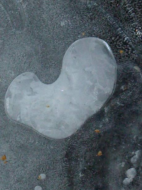 Heart-Shaped Ice Pattern stock photo