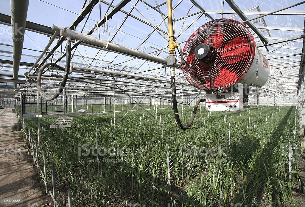 Heater in a Greenhouse royalty-free stock photo