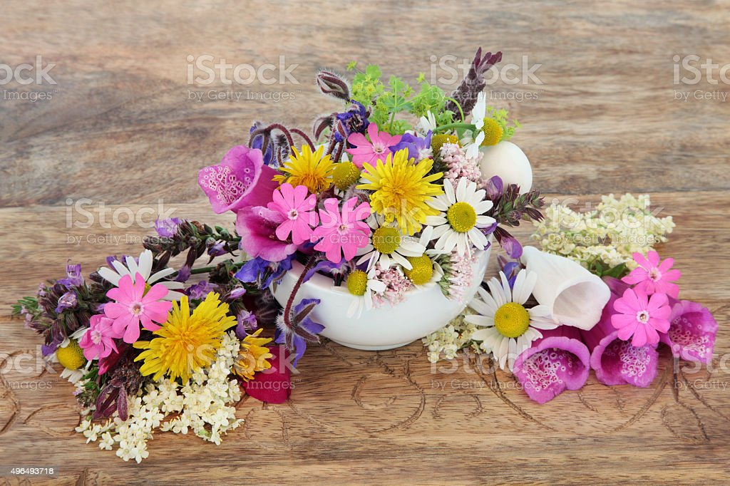 Heath Care with Flowers stock photo
