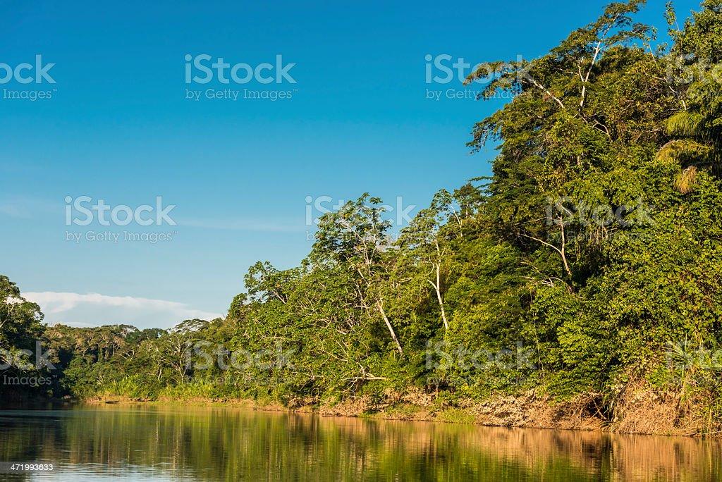 heath river peruvian Amazon jungle Madre de Dios Peru stock photo