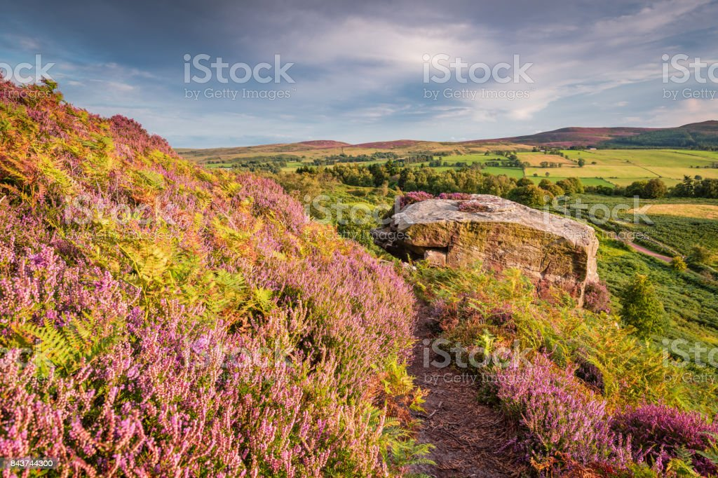 Heather bracken and crags on Rothbury Terraces stock photo