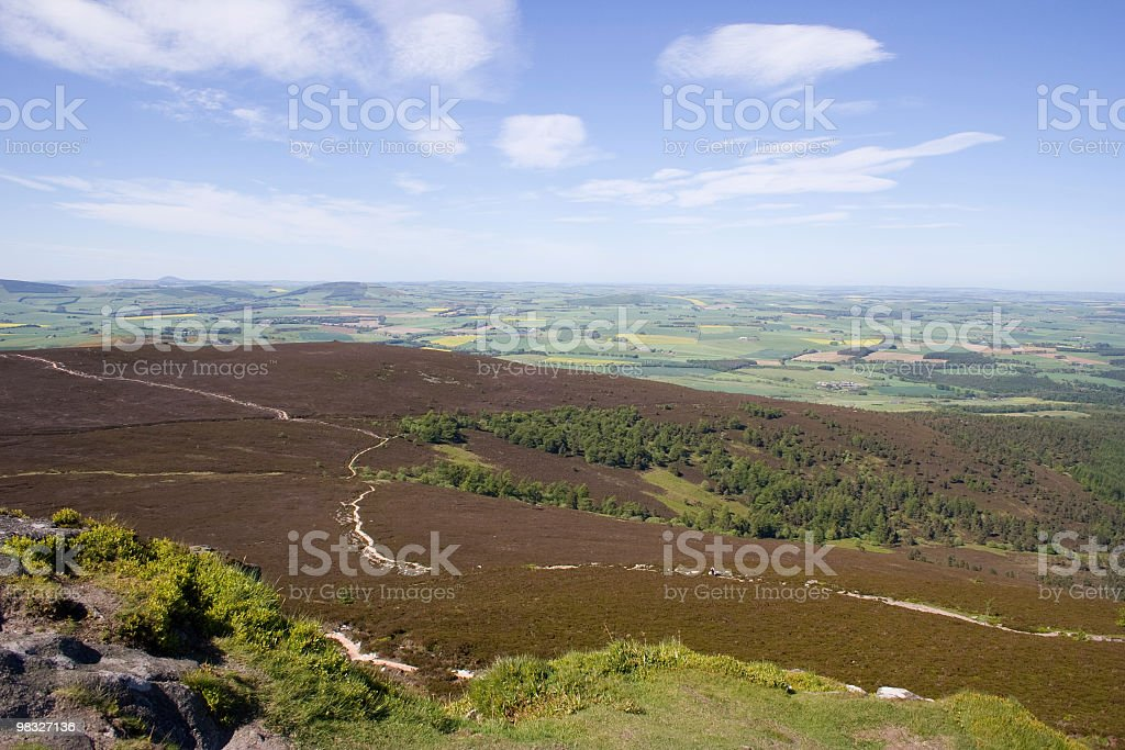 Heather covered hills in Scotland royalty-free stock photo