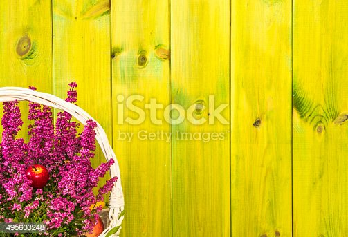948743278istockphoto Heather flowers in basket isolated on rustic wood background. 495603248