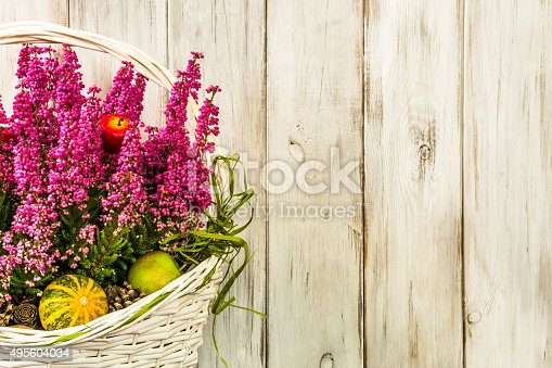 948743278istockphoto Heather flowers in basket isolated on rustic wood background. 495604034