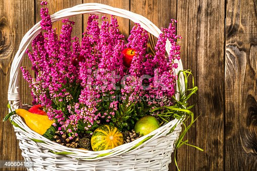 948743278istockphoto Heather flowers in basket isolated on rustic wood background. 495604152
