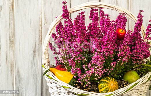 948743278istockphoto Heather flowers in basket isolated on rustic wooden background. 495603914