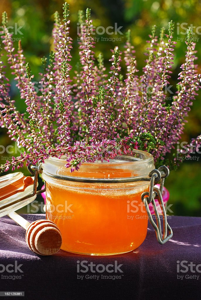 heather honey royalty-free stock photo