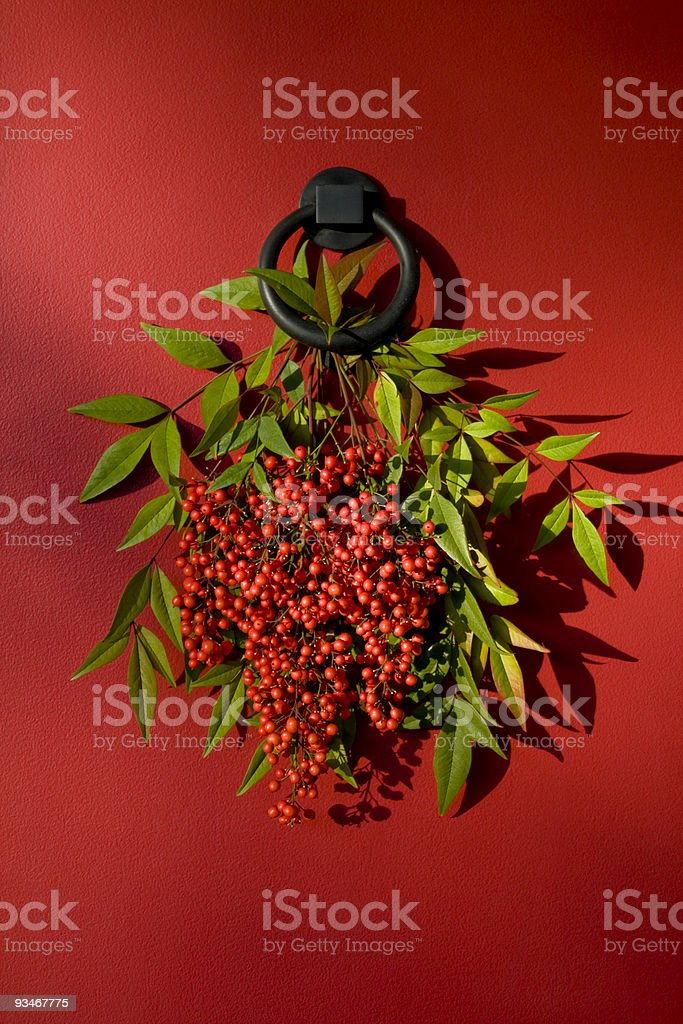 Heavenly bamboo leaves and berries on red door. stock photo