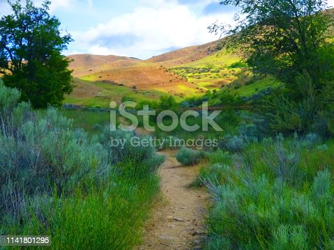 Literally a few steps out of Harris Ranch in the gorgeous Boise Foot Hills.