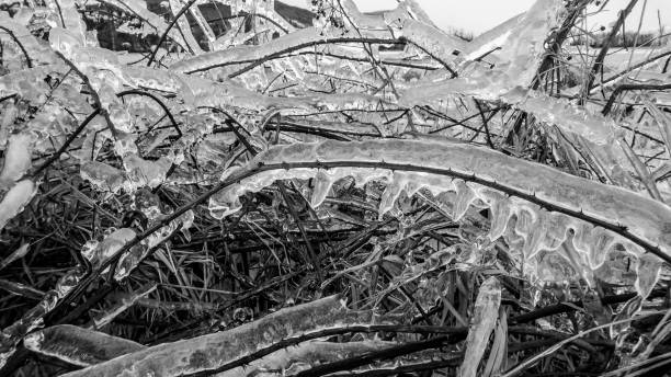 Schwere Eis Maut – Foto