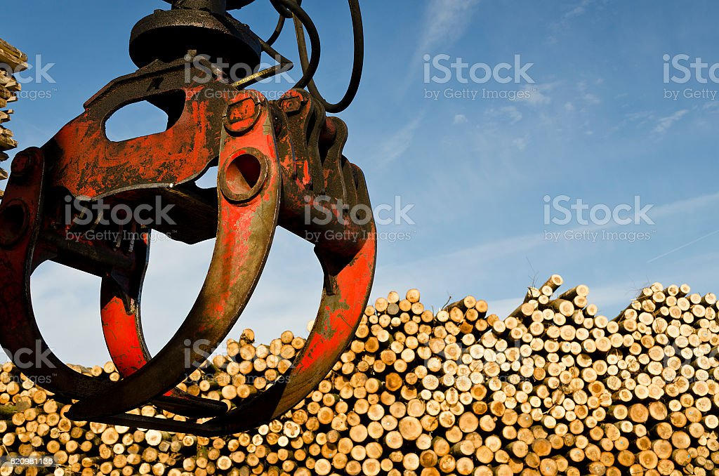 Heavy lifting crane loading cut wooden logs foto royalty-free