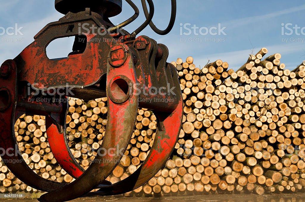 Heavy lifting crane loading cut wooden logs stock photo