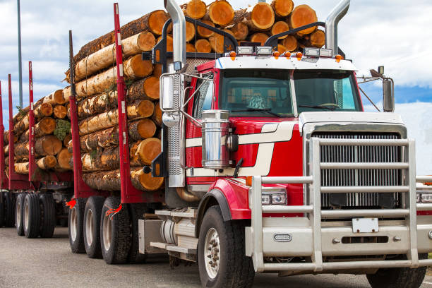 heavy loaded timber transport truck in british columbia canada - logging equipment stock photos and pictures