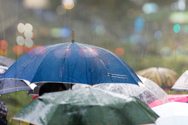 heavy rain in the city - umbrellas stock photos and pictures