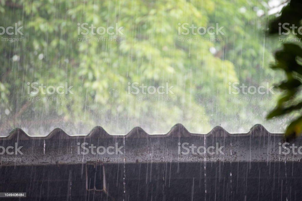 heavy rain on steel roof with green tree background. rainy season.
