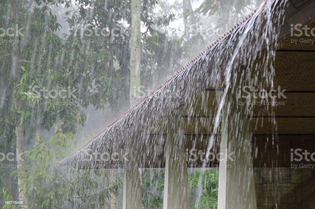 Heavy Rain stock photo