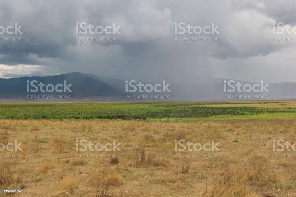 Heavy rain - Royalty-free Africa Stock Photo
