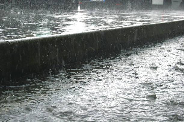 Schwere Regen-Dusche – Foto