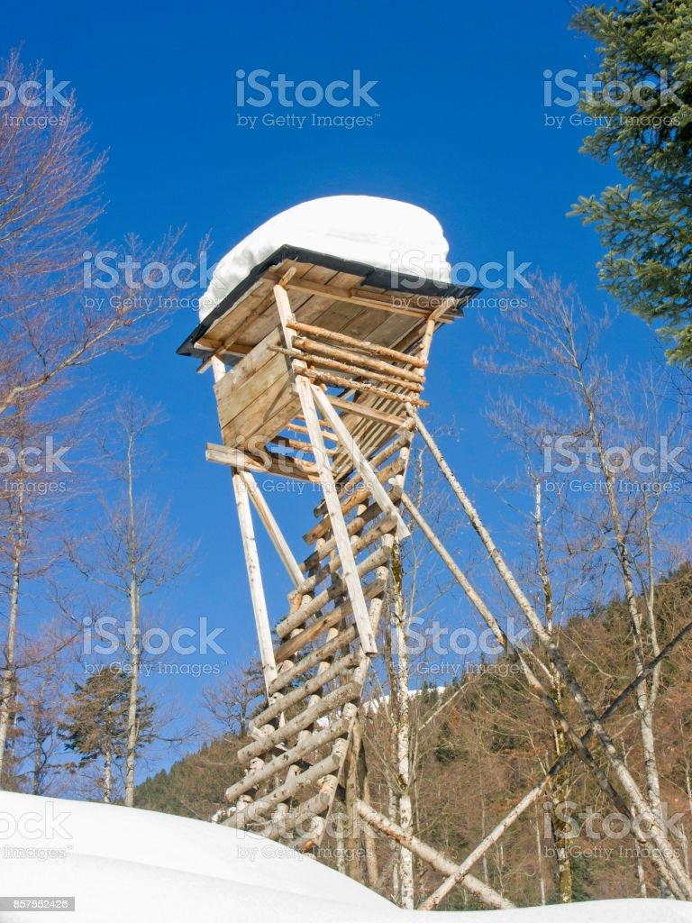 heavy snow load stock photo
