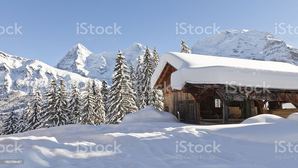 Heavy Snow Near Mürren, Switzerland stock photo