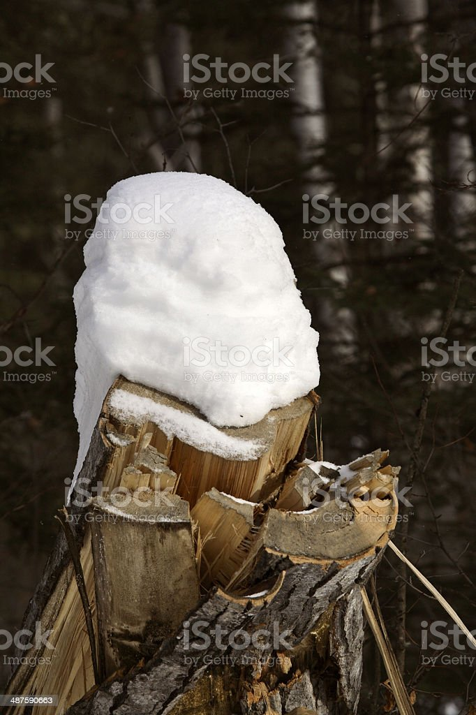 Heavy snow pack on stump stock photo