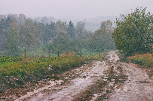 Heavy spring rain in the countryside