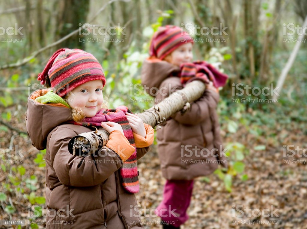 Heavy work in the woods royalty-free stock photo