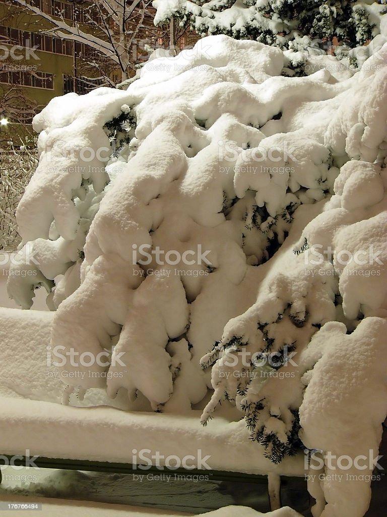 Heawy snow royalty-free stock photo