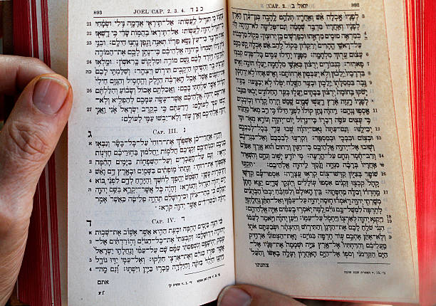 hebrew bible essay The term old testament, with its implication that there must be a corresponding new testament, suggests to some that judaism's bible and by extension judaism are outdated and incomplete well-intended academics thus offered hebrew bible as a neutral alternative however, the new language confuses.