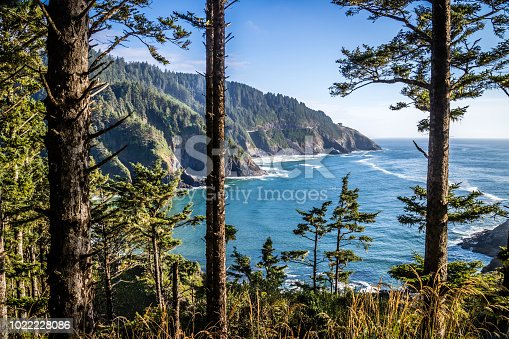 Waves coming from the sea in Heceta Head Lighthouse State Park