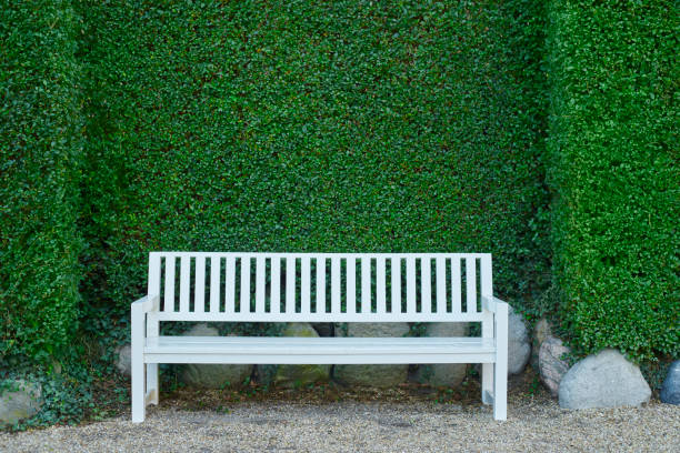 Hedge and bench in public park - no people stock photo