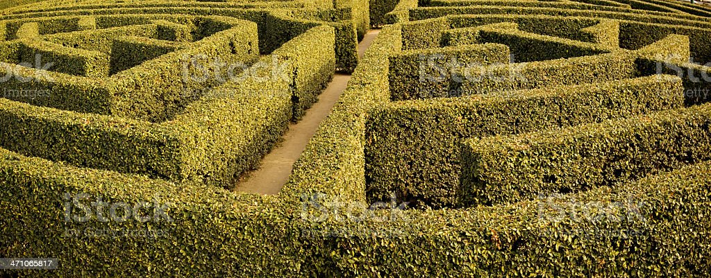 An outdoor garden maze or labyrinth in which the \'walls\' or dividers...