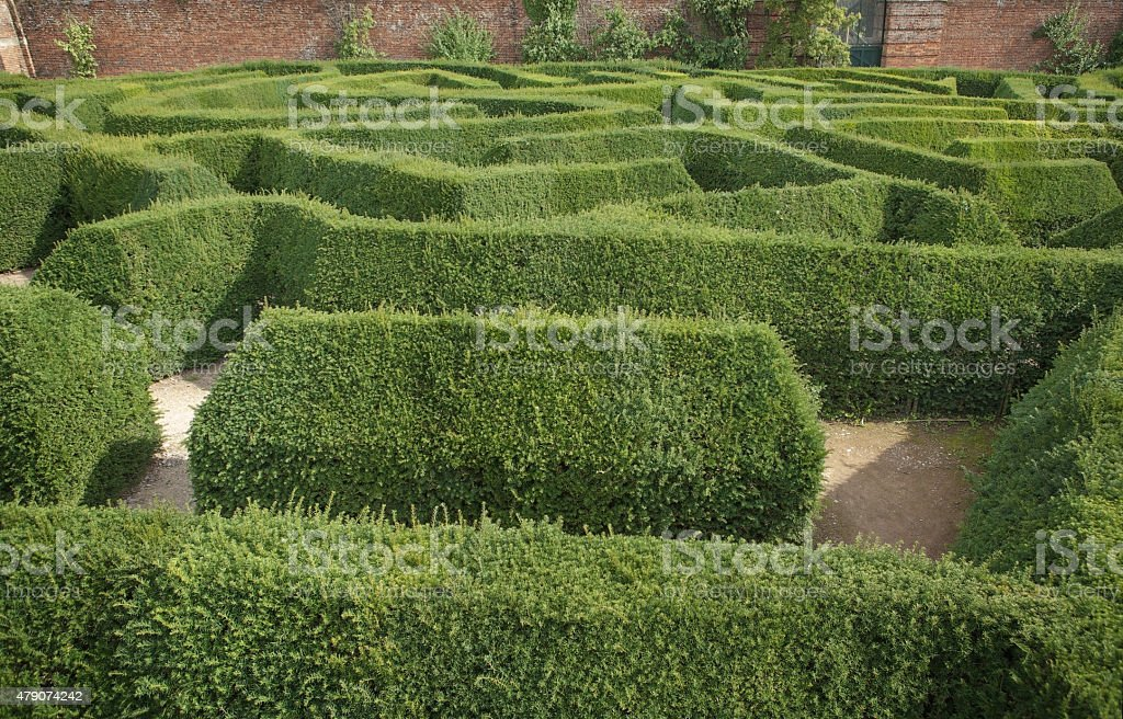 looking down at small section of a maze
