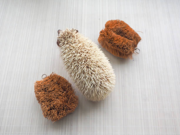 Hedgehog and scrub brush hedgehog and scrub brush. scrubbing brush stock pictures, royalty-free photos & images