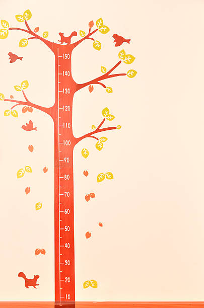 height scale on the wall - height measurement stock photos and pictures