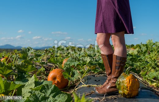 istock Heirloom Pumpkin and Woman with Copy Space 1150975829