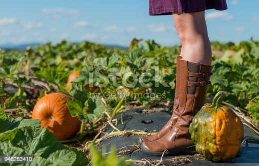 istock Heirloom Pumpkin at Feet of Woman with Straight Legs 946283410